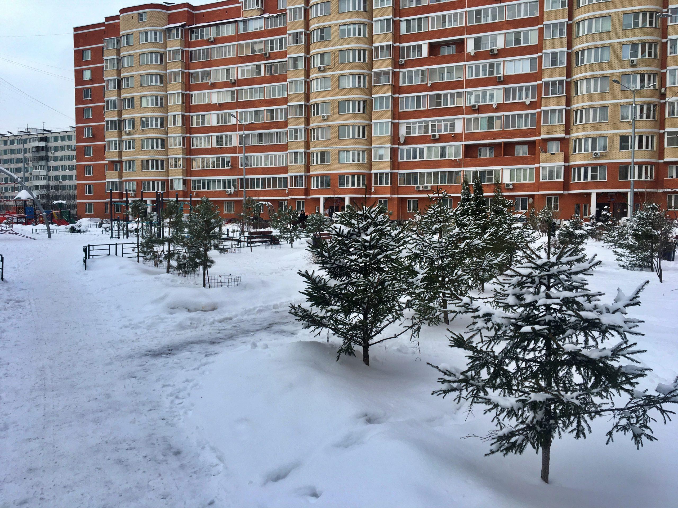 Участники онлайн-школы «Точка сборки» разработали проект благоустройства придомовых территорий в Новой Москве