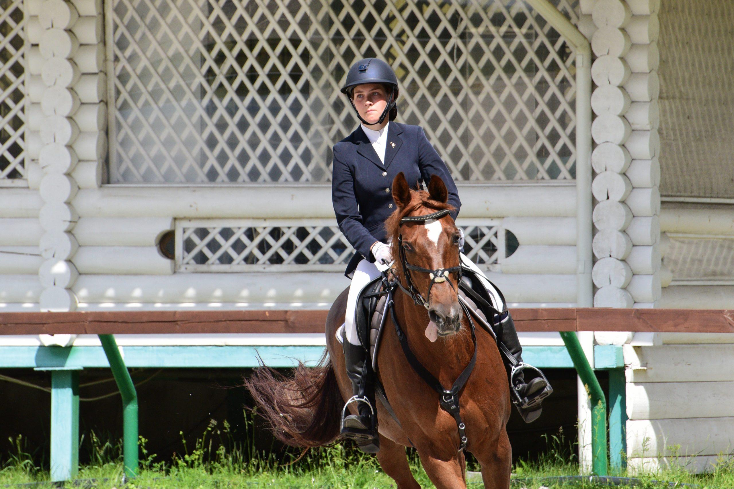 Открытый кубок по конному спорту пройдет в Москве. Фото: Пелагия Замятина, «Вечерняя Москва»