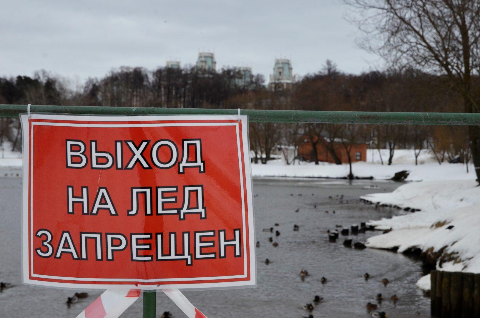Специалисты проверили водоемы в Новофедоровском. Фото: Анна Быкова