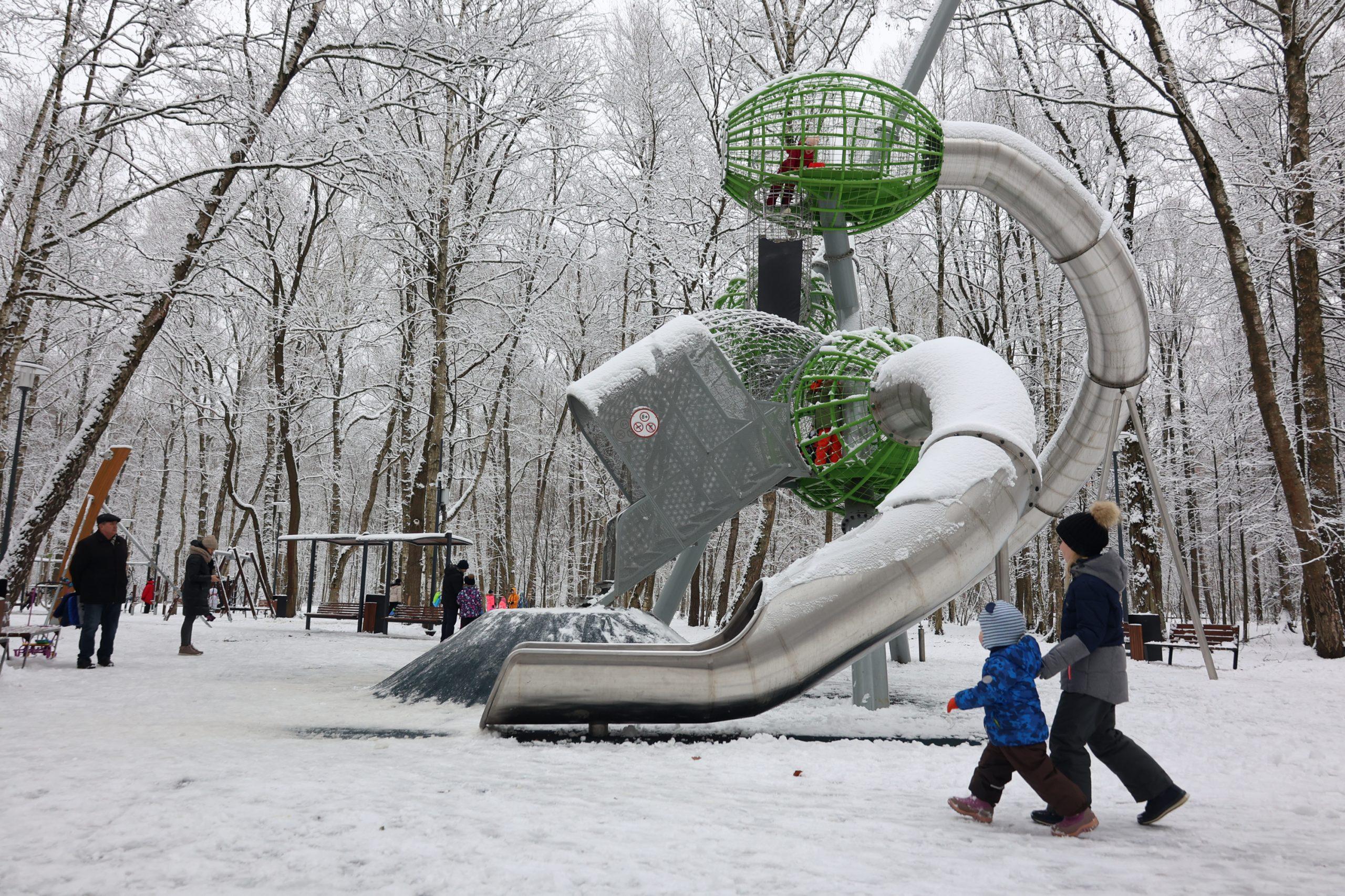 Новый парк разобьют в поселении Сосенское. Фото: Виктор Хабаров, «Вечерняя Москва»