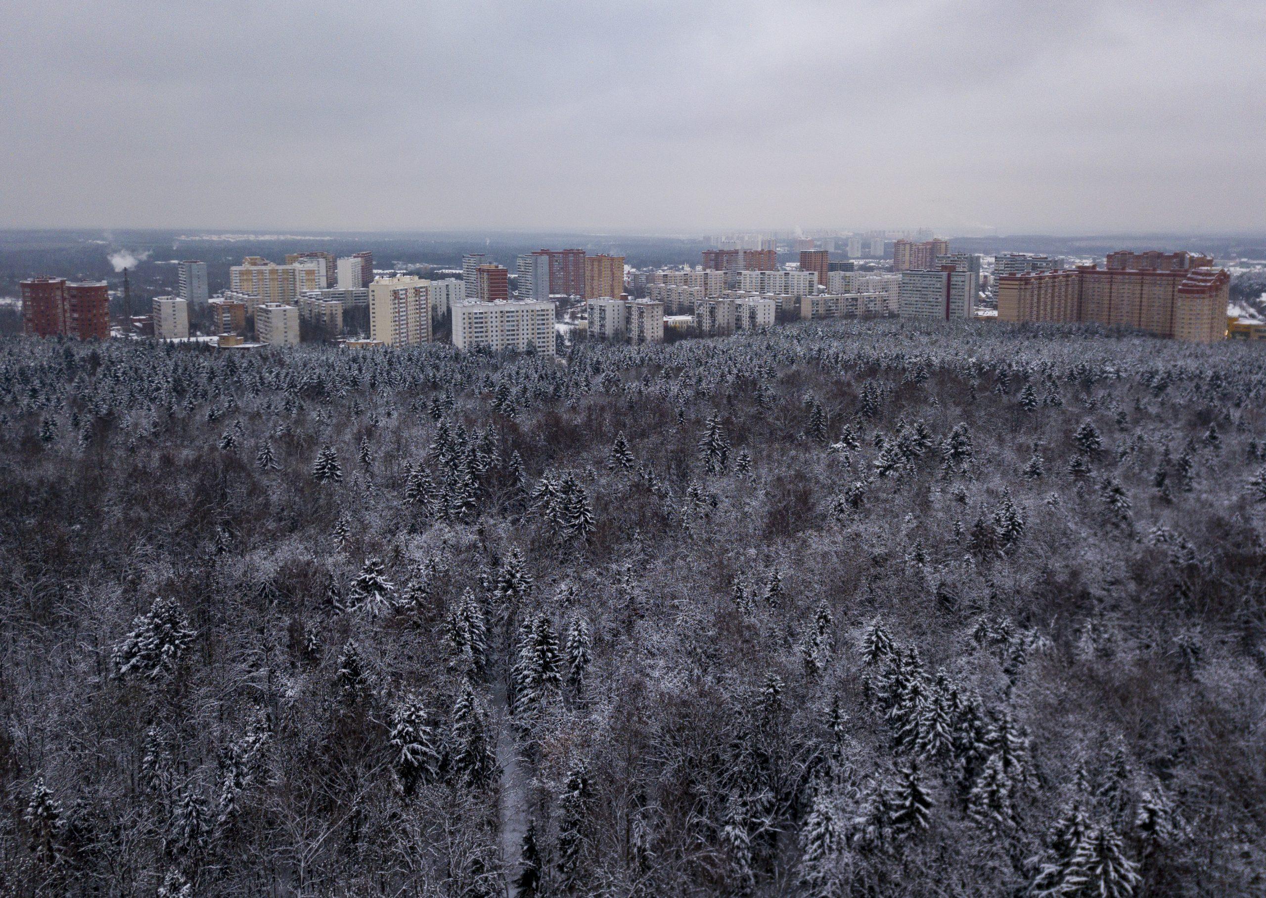 Земельный участок в Щаповском выделят под застройку