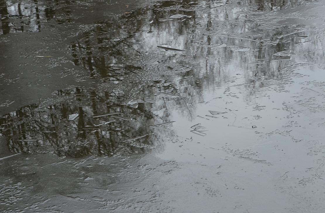 Проверку водоемов организовали в поселении Кокошкино