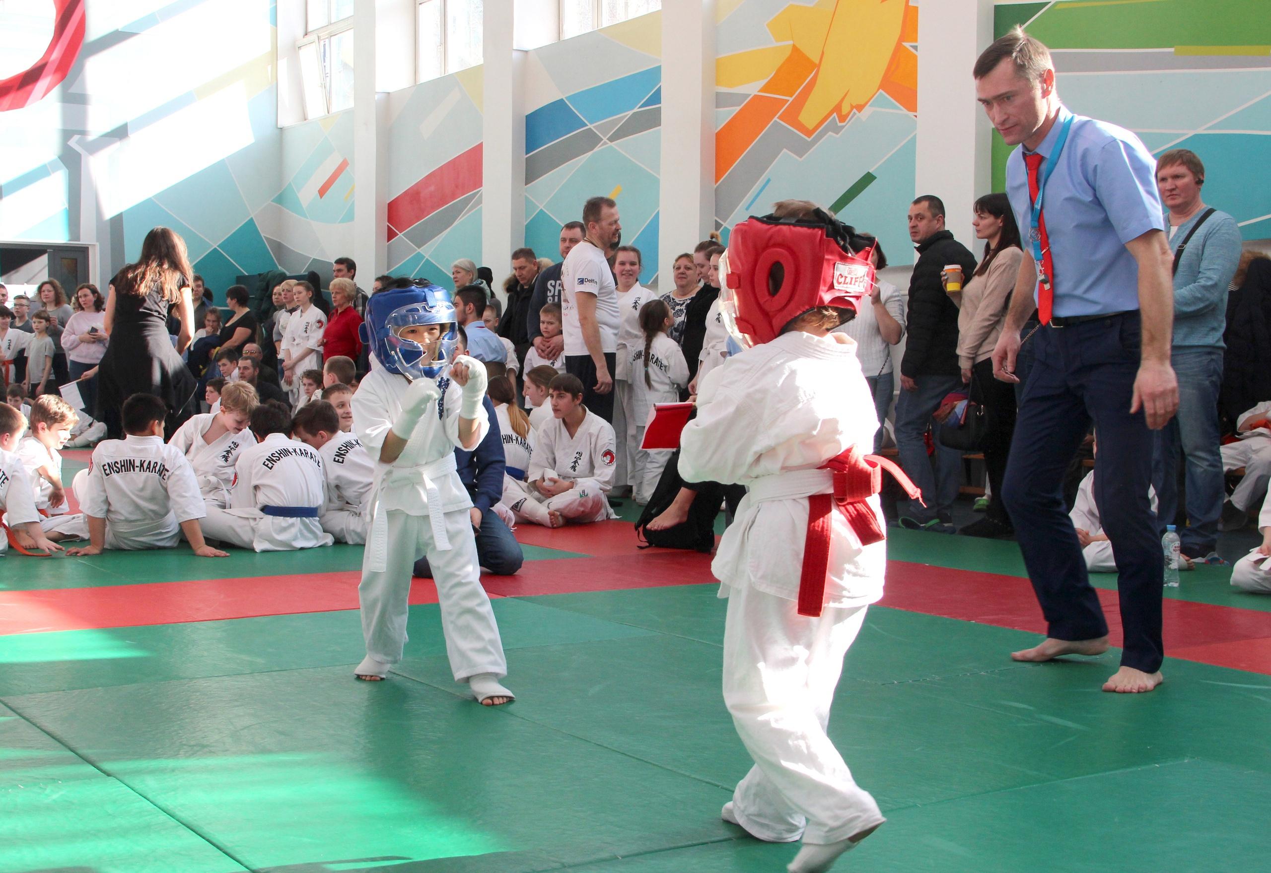 Спортсмены поселения Первомайское примут участие в соревнованиях по карате