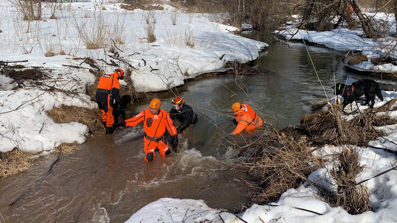 Специалисты разобрали деревянные завалы на реке в Роговском