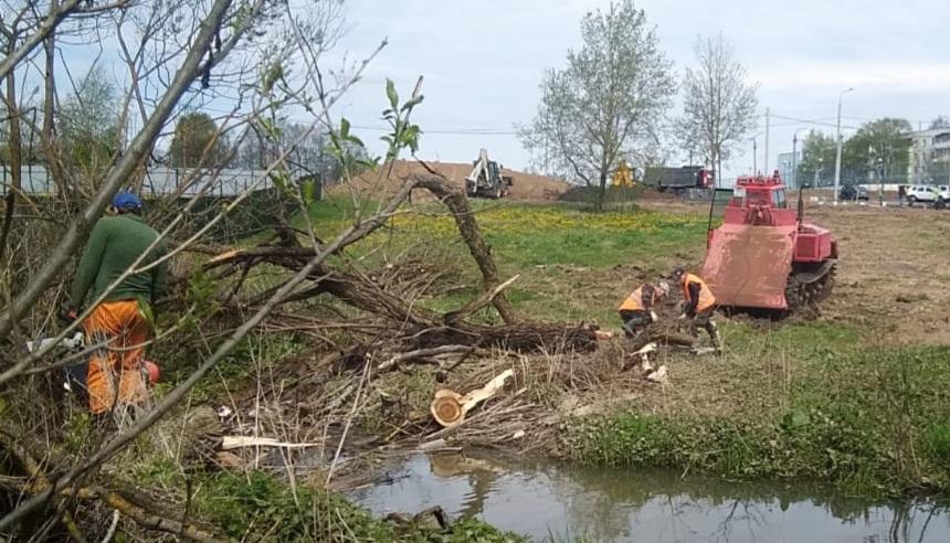 Специалисты приступили к расчистке зоны отдыха в Роговском
