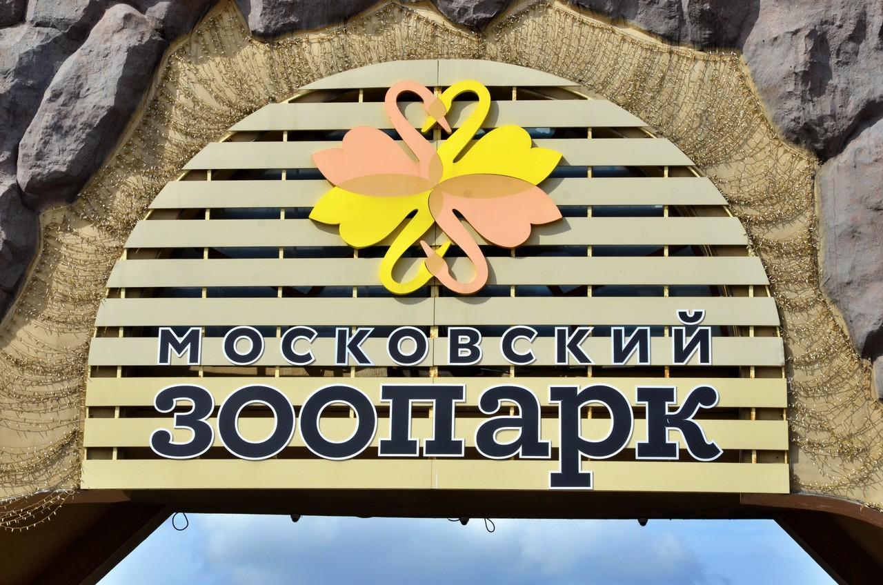 В Московском зоопарке почти завершили установку траволаторов
