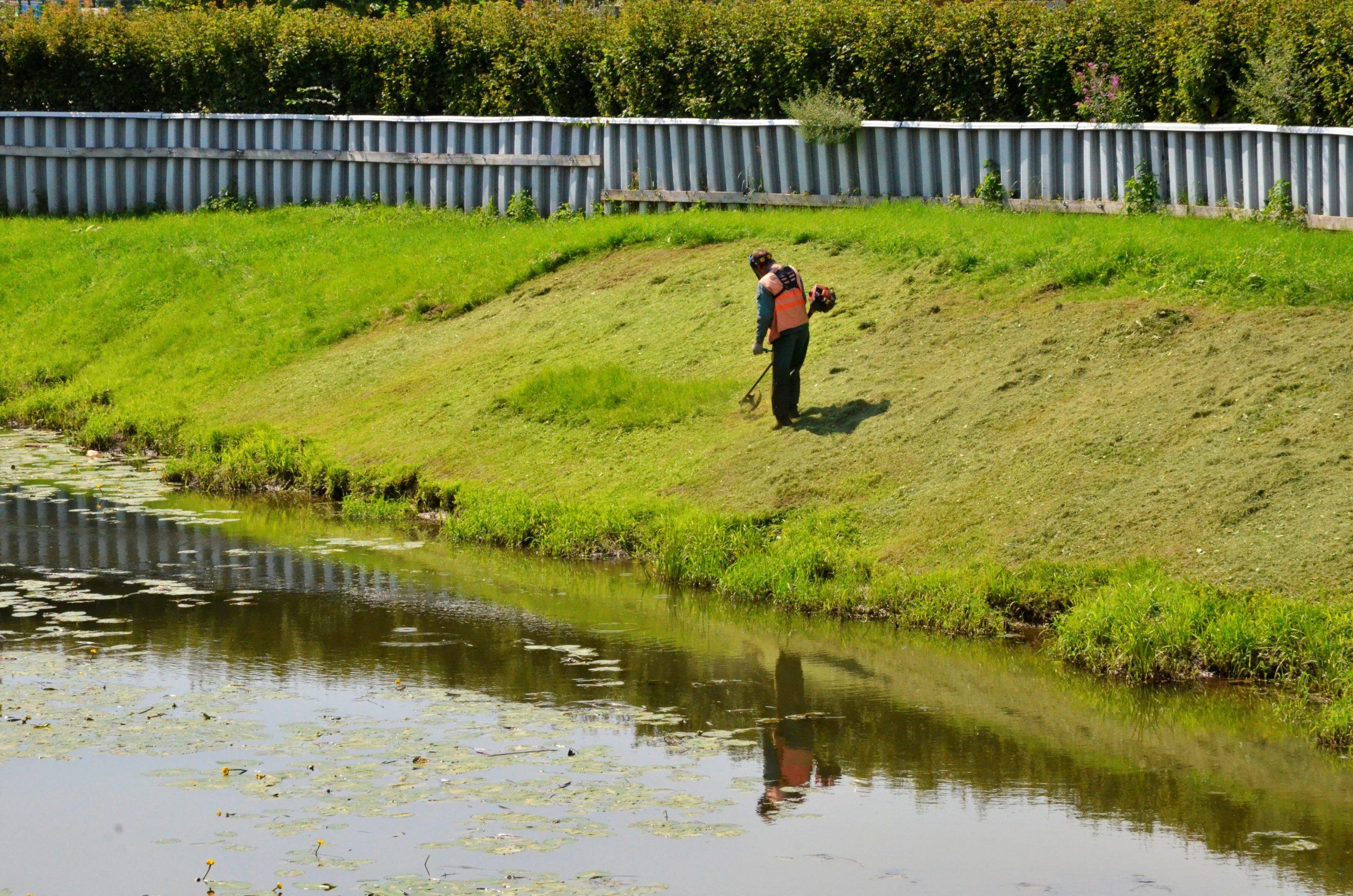 Окос травы проведут в населенных пунктах поселения Роговское