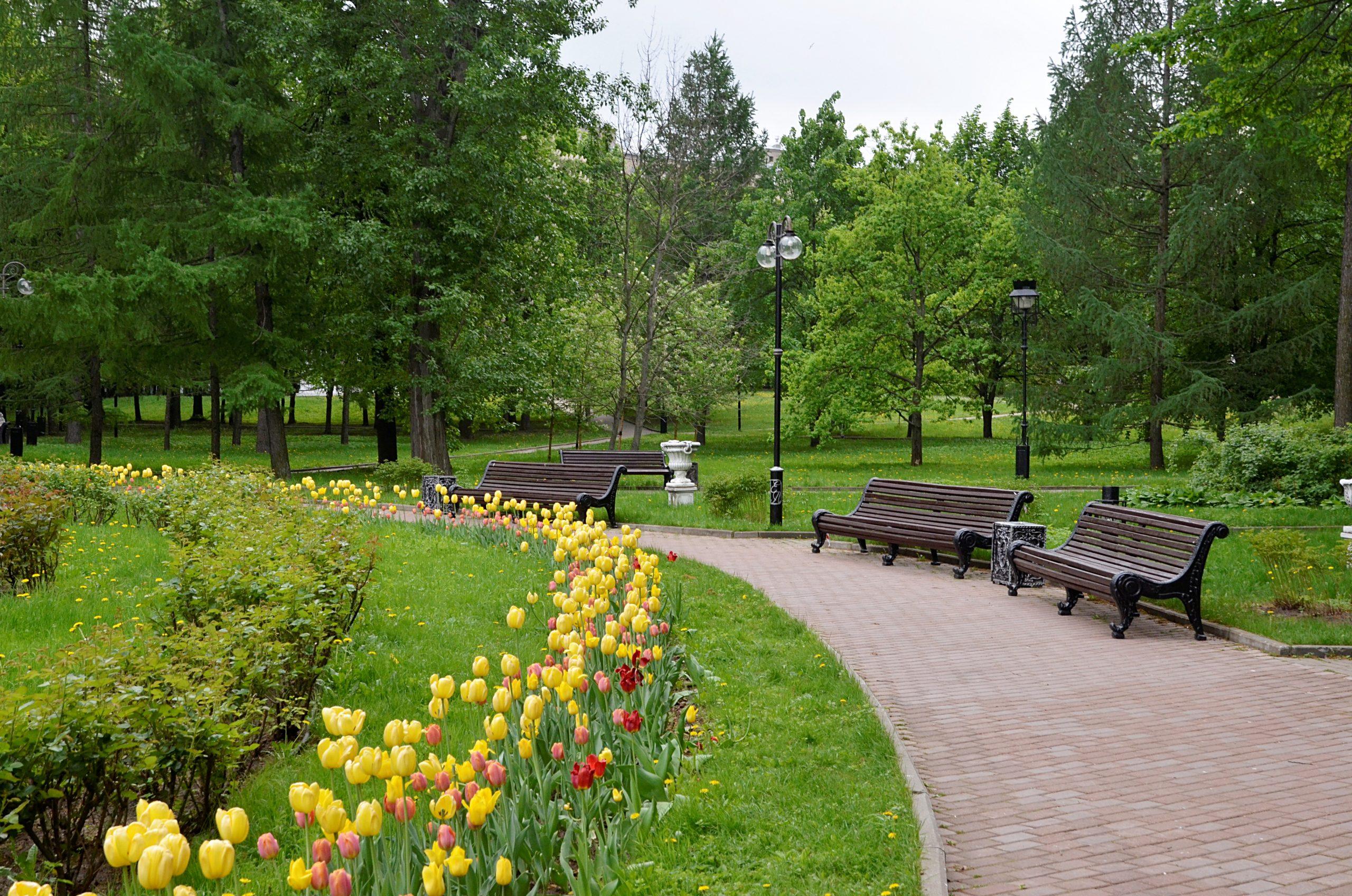 Онлайн-конкурс на лучшие названия парков проходит в Центре культуры и спорта «Филимонковское»