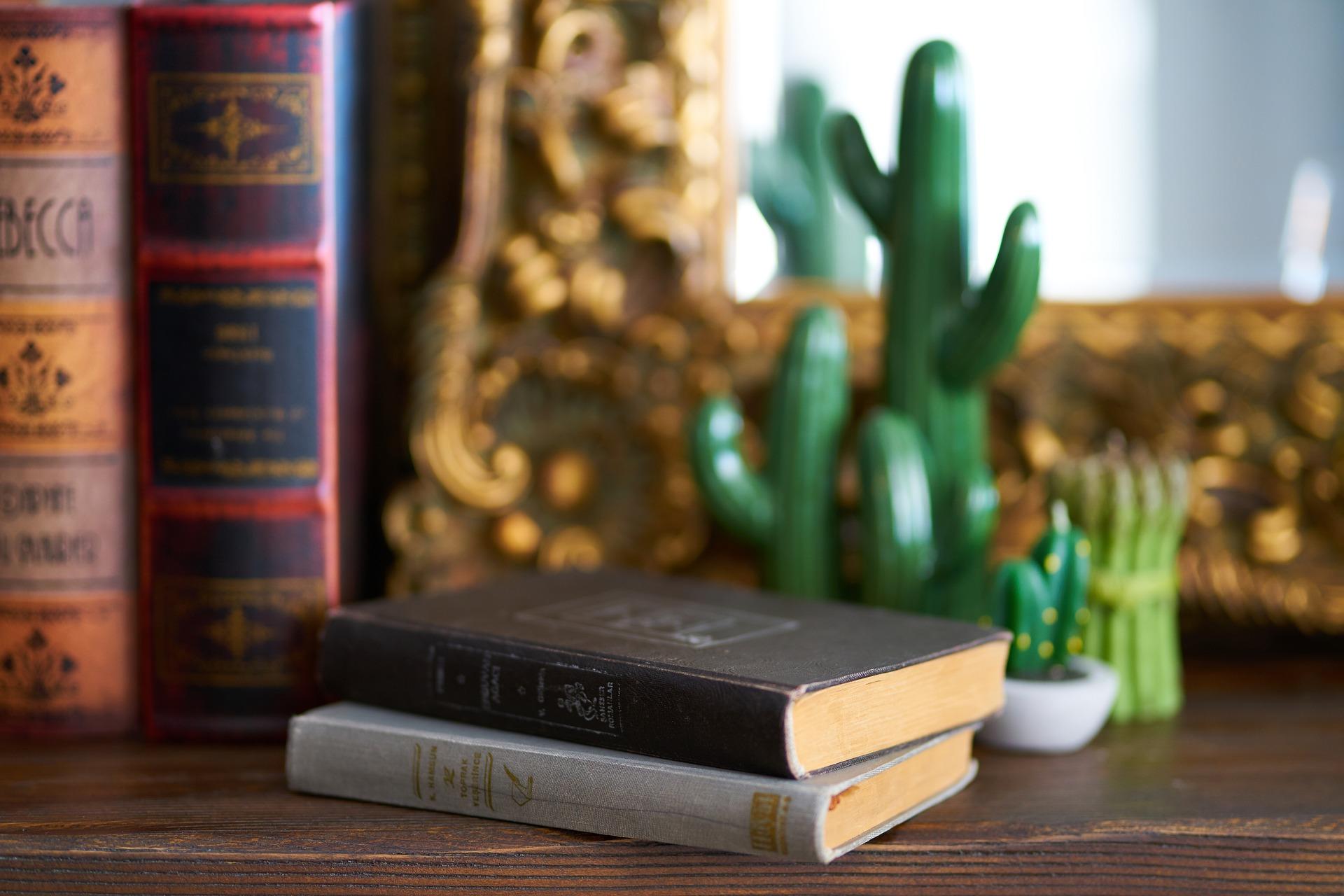 Очередной выпуск программы «Ожившие странички книг» подготовили сотрудники Дома культуры «Солнечный»