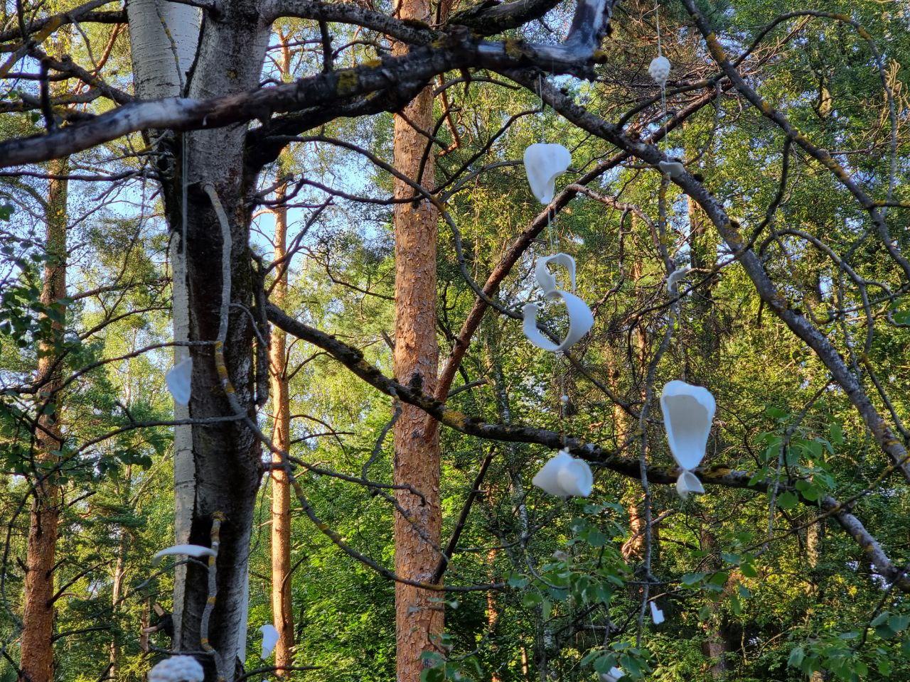 Выставку памяти поэта Александра Еременко открыли в парке Дома творчества «Переделкино»