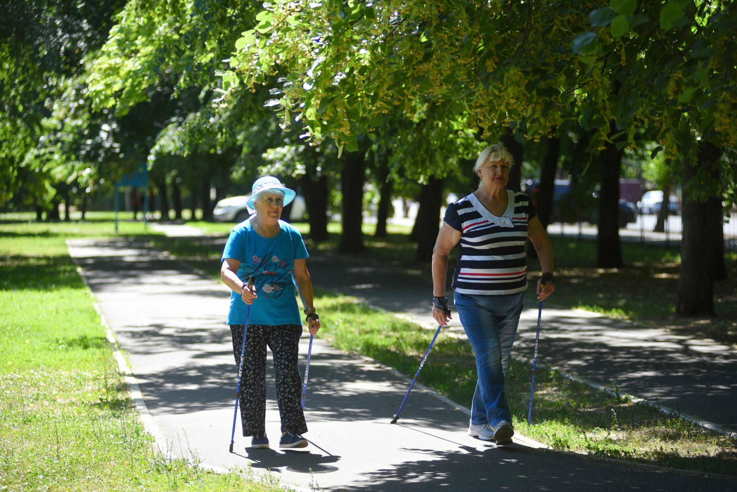 Тренировки по скандинавской ходьбе снова проходят на свежем воздухе в рамках проекта «Московское долголетие»