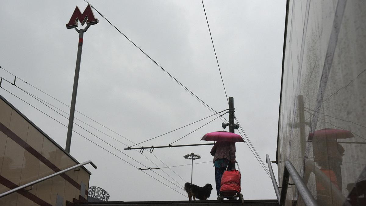 Дождь и до 15 градусов тепла ожидается в Москве