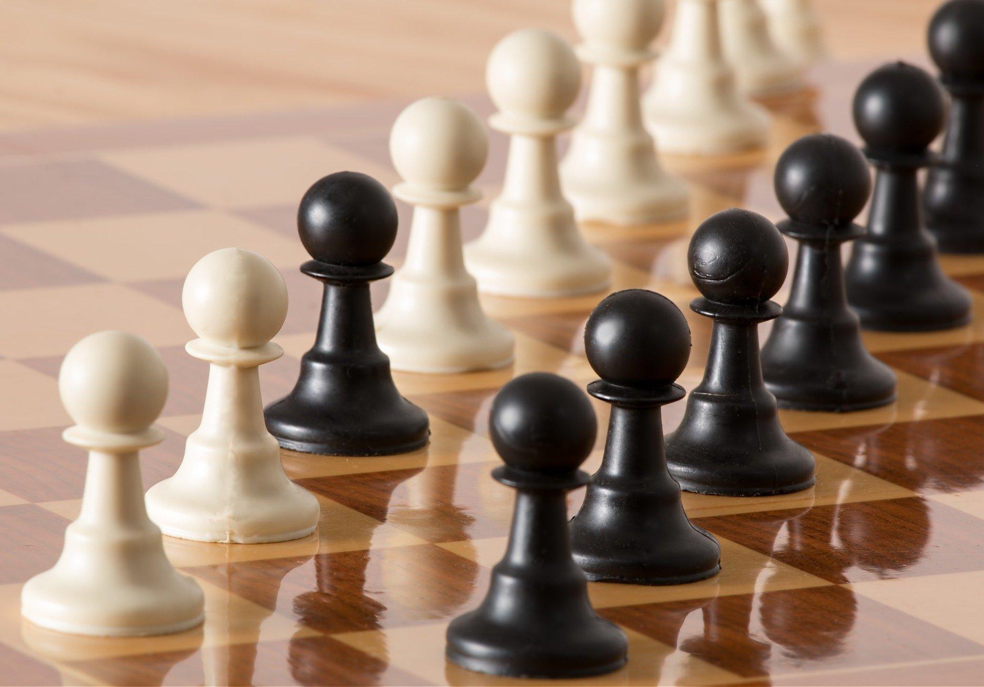 Посвященные Дню знаний турниры по шахматам и шашкам прошли в школе №2057 Кокошкино
